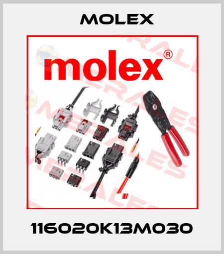 Molex-116020K13M030  price