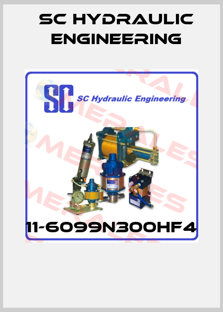 SC hydraulic engineering-11-6099N300HF4  price