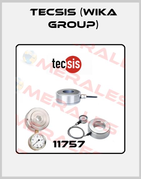Tecsis (WIKA Group)-11757  price