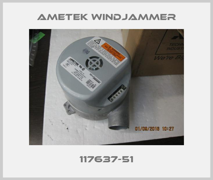 Ametek Windjammer-117637-51 price
