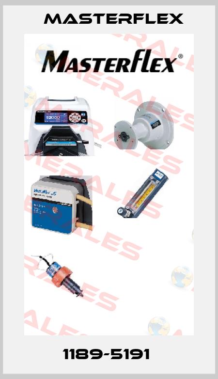 Masterflex-1189-5191  price