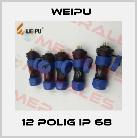 Weipu-12 POLIG IP 68  price
